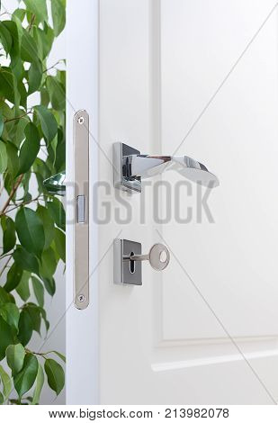 Closeup of door fittings. A white door with modern chrome handles door lock with key. Interior decor with green plant