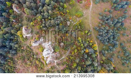 Forest and rocks in autumn aerial drone top view