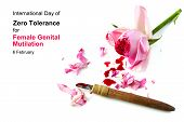 cut rose blossom blood and knife isolated on a white background with text International Day of Zero Tolerance for Female Genital Mutilation 6 February concept for human rights poster