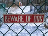 beware of dog sign. poster