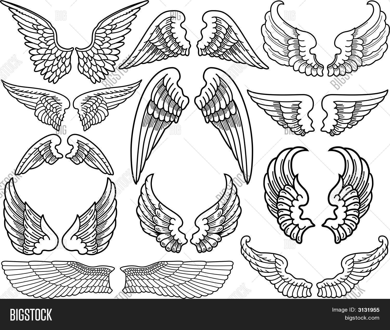 Angel Wings Vector Photo Free Trial Bigstock