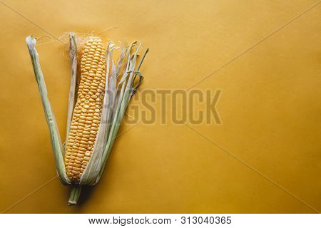 Fresh Corn On A Yellow Background. Delicious Food, Vegetables A