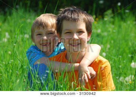Two Brothers In Meadow