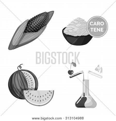 Vector Illustration Of Transgenic And Organic Sign. Collection Of Transgenic And Synthetic Stock Sym