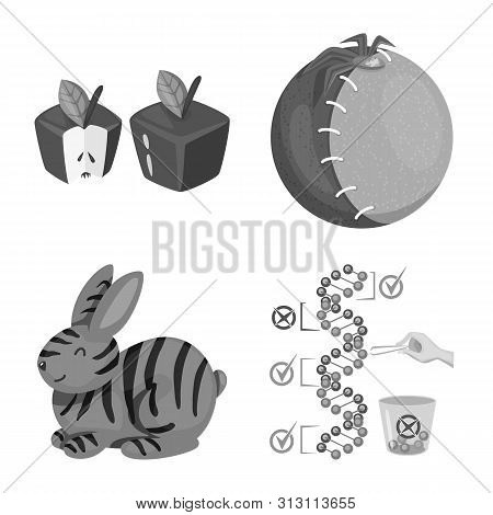 Vector Design Of Transgenic And Organic Icon. Collection Of Transgenic And Synthetic Stock Symbol Fo