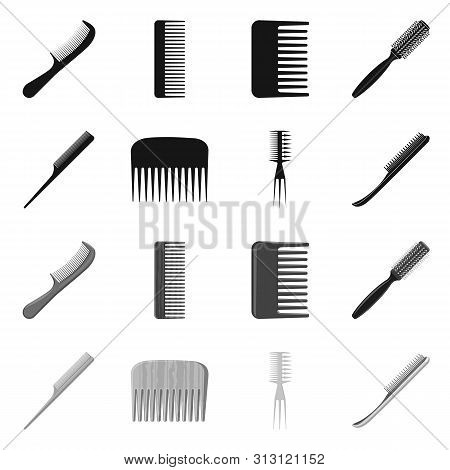 Vector illustration of brush and hair icon. Set of brush and hairbrush stock vector illustration. poster