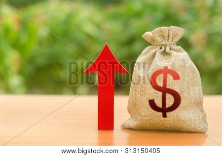 Money Bag With Dollar Symbol And Red Up Arrow. Increase Profits And Wealth. Growth Of Wages. Investm