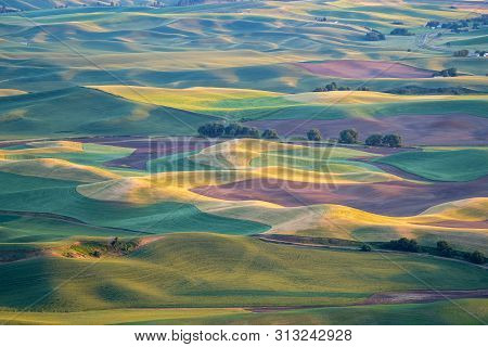 Golden Hour Sunset Aerial View Of The Palouse Region Of Eastern Washington State, As Seen From Stept