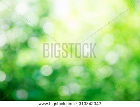 green bokeh background,green bokeh,green bokeh abstract