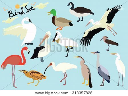 Set Of Cute Cartoon Birds Version 2 On Isolated Blue Background Vector Illustration