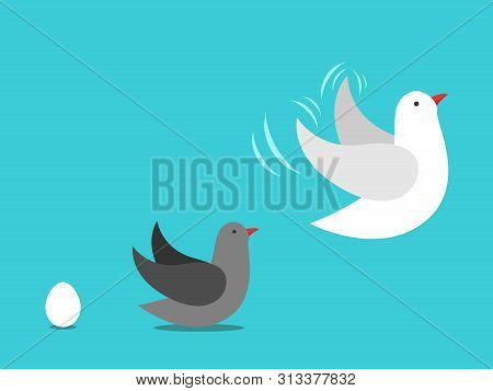 Process Of Growing Up: Egg To Nestling Or Fledging And Grown-up Bird. Ageing, Evolution, Childhood,