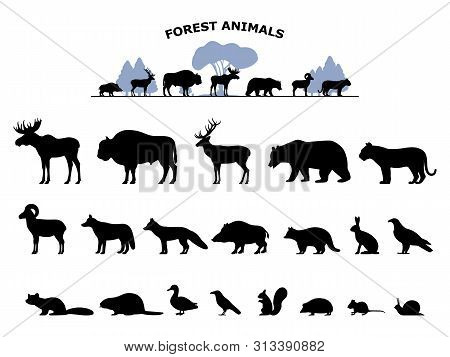 Set Of Black Silhouette Wild Forest Steppe Animals. Collection Woodland Animals. Vector Illustration