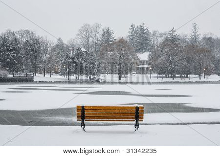 Park Bench in Winter