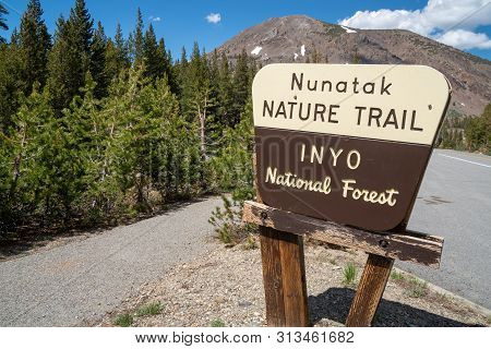 Mono County, California - July 11, 2019: Sign For The Nunatak Nature Trail In The Inyo National Fore
