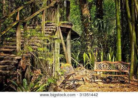 Wooden Stairs And Benches In Jungle