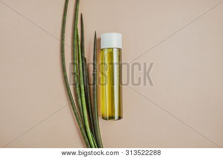 Hair Green Shampoo. Natural Care Hair And Skin. Healthy Hair Concept.