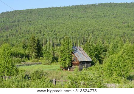 Lonely Old House Among Green Sea Deep In Siberia