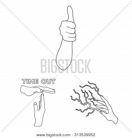 Isolated Object Of Animated And Thumb Icon. Collection Of Animated And Gesture Bitmap Icon For Stock