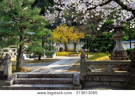 Fresh Japanese temple garden at spring in Kyoto