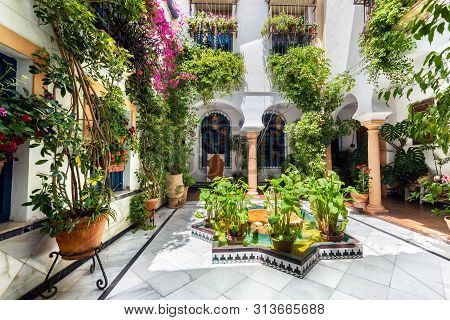 Cordoba, Spain - May 21, 2019: Typical Andalusian Courtyard Decorated With Flowers And Pots .