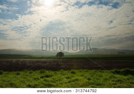 Fog Is Rising Upon The The Fields And Generates A Singular Athmosphere In The Morning Sun