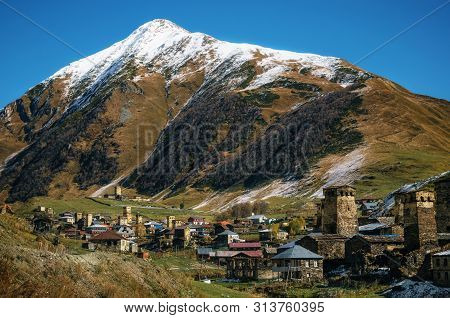 Fields And Meadows With Cows Against Svan Towers In Ushguli And In Autumn At Sunny Day. Caucasus, Up