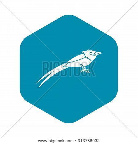 Asian Paradise Flycatcher Icon. Simple Illustration Of Asian Paradise Flycatcher Vector Icon For Web