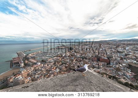 View from a hilltop on the port city in the south-east of Spain. Alicante, Costa Blanca Coast, Spain, Apr.2019 poster