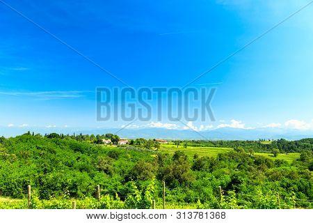 Fields of Friuli Venezia-Giulia in a spring day poster
