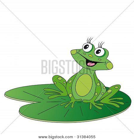Green Frog Sitting On Green Leaf