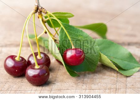 Ripe Red Cherries On Old Wooden Boards