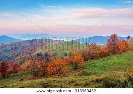 Rural Area In Mountains At Dawn. Beautiful Countryside Autumn Scenery. Trees On Rolling Hills In Fal