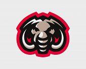 Elephant head modern logo, template design emblem for a sport and eSport team. poster