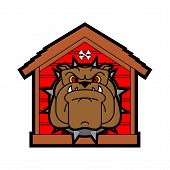 Guard dog in doghouse. Angry dog in kennel poster