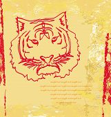 Abstracted doodles portrait Tiger on the old paper , vector illustration poster