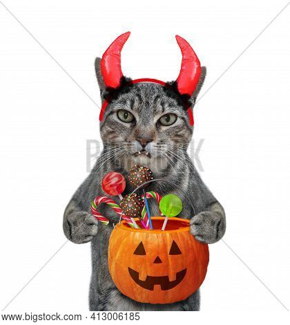 A Gray Cat In Red Devil Horns Is Holding A Pumpkin Pail With Candies For Halloween. White Background