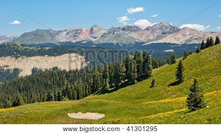 Alpine Panorama Along The Colorado Trail