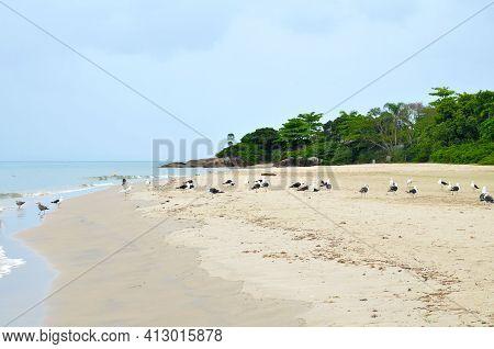 Beautiful Jurere Beach In Florianopolis, Santa Catarina, Brazil