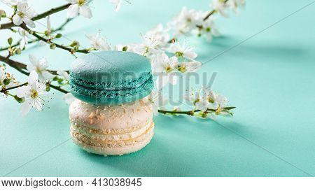 White And Turquoise Macaroons And Spring Cherry Blossom Against Turquoise Background. Colorful Macar