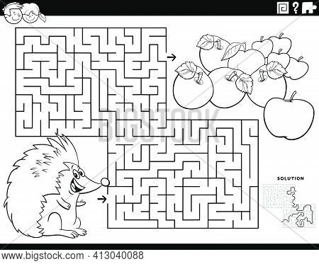 Black And White Cartoon Illustration Of Educational Maze Puzzle Game For Children With Hedgehog Anim