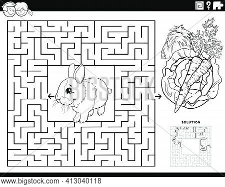 Black And White Cartoon Illustration Of Educational Maze Puzzle Game For Children With Rabbit Animal