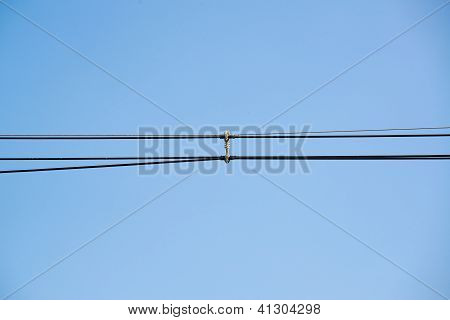 Parallel Of Power Cable Lines And Cable Divider