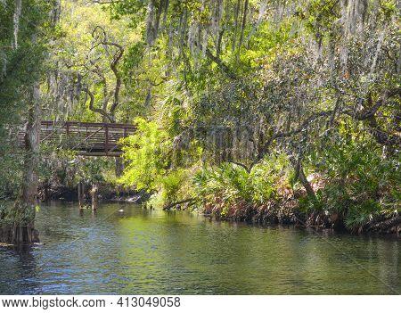 A Bridge Over Shingle Creek In The Shingle Creek Regional Park, Osceola County, Kissimmee, Florida