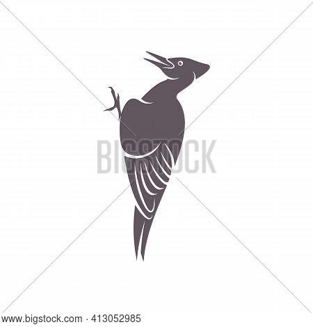 Woodpecker Bird Design Vector Illustration, Creative Woodpecker Bird Logo Design Concept Template, S