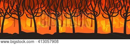 Dangerous Wildfire Bush Fire Development Dry Woods Burning Trees Global Warming Natural Disaster Con