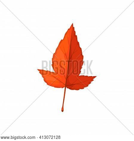 Autumn Leaf Icon, Hawthorn Tree, Forest Fall Foliage, Vector. Isolated Dry Red Leaf Of Hawthorn Tree