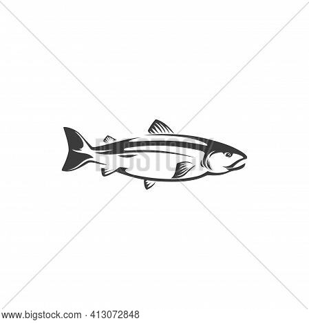 Fish Chum Or Pink Salmon, Sockeye Isolated Monochrome Icon. Vector Seafood, Fishing Sport Trophy Und