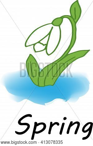 Illustration Spring, The First Snowdrop, The First Flower