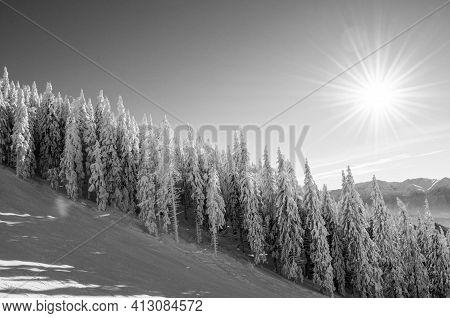 Black And White Winter Scenery  In Postavaru Massif