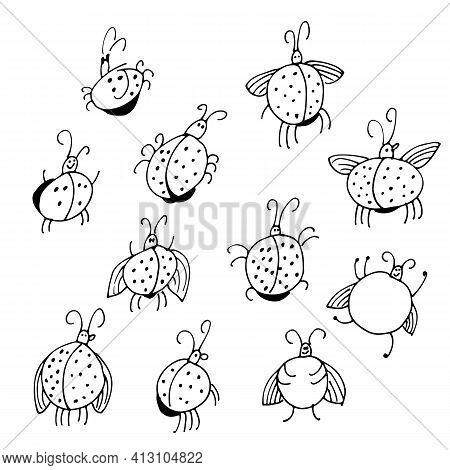 Ladybugs Vestor Set, Funny Hand Drawn Ladybirds Illustration Isolated On White Background